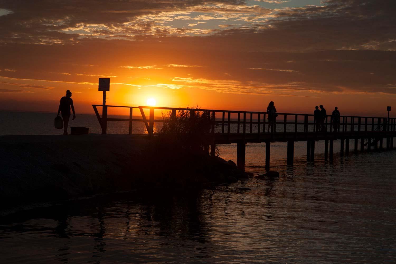 Bryggan på Barsebäck Strand vid solnedgång
